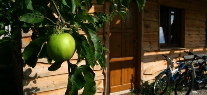 Gospodarstwo agroturystyczne Rosochaty Róg